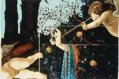1982_Botticelli02
